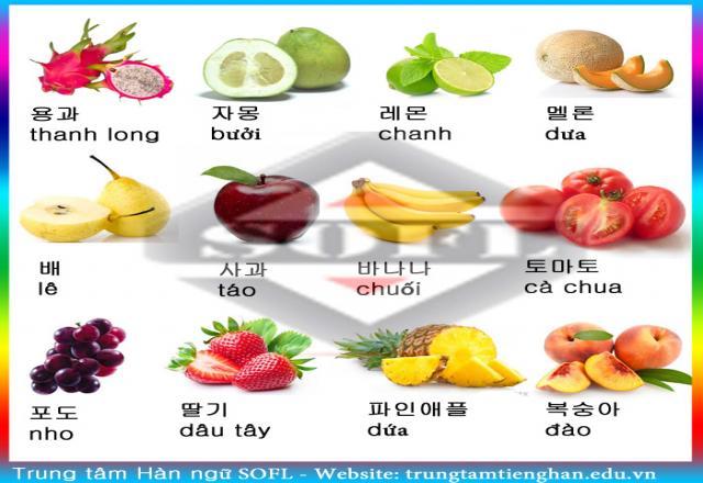 Cách học từ vựng tiếng Hàn hiệu quả