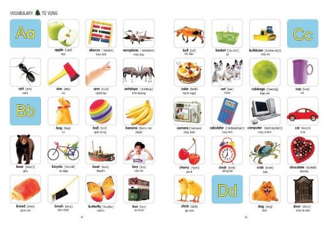 Tìm ra cách học từ vựng tiếng Hàn hiệu quả nhất
