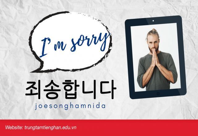 """Học cách nói và sử dụng """"xin lỗi"""" tiếng Hàn đơn giản"""